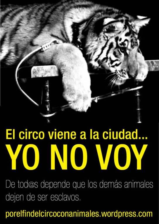 yo-no-voy-al-circo-1